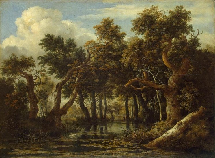 Jacob Isaakszoon van Ruisdael >> The Marsh in a Forest  |  (Oil, artwork, reproduction, copy, painting).