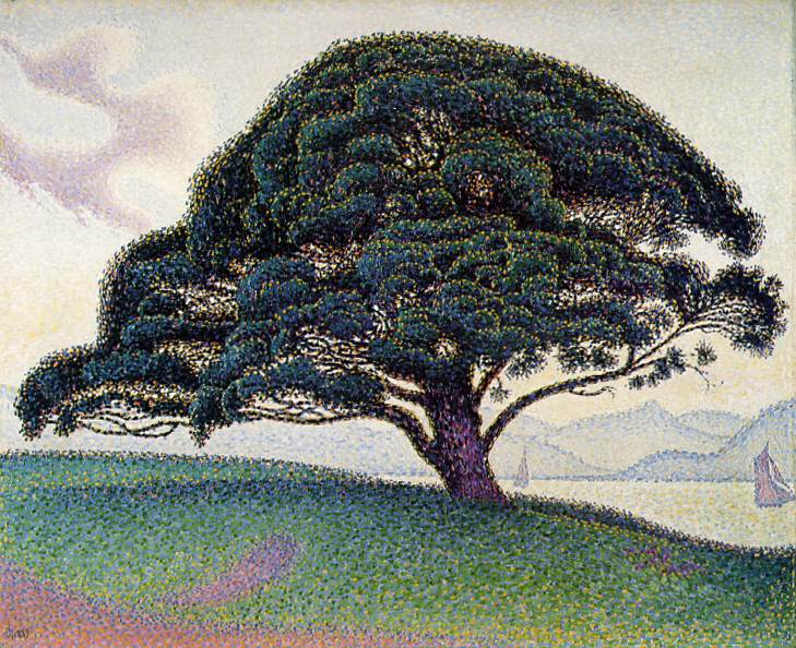 Paul Signac >> Le pin de Bonaventura a Saint-Tropez (The Bonaventure Pine in Saint-Tropez)  |  (Oil, artwork, reproduction, copy, painting).