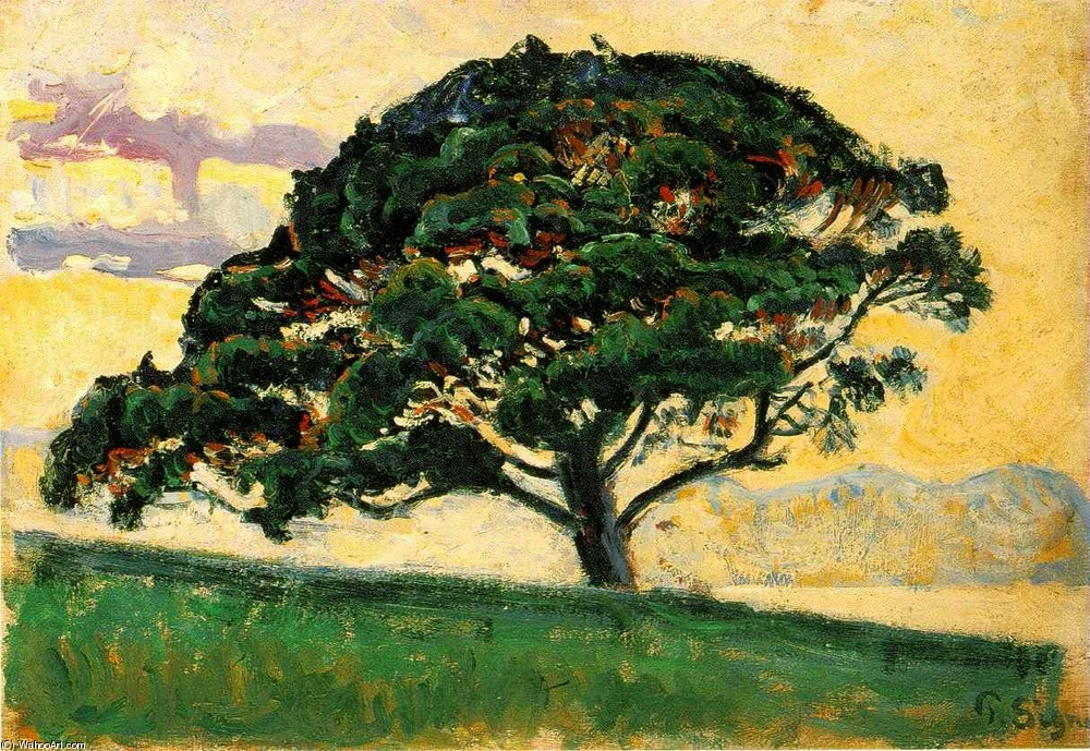 Paul Signac >> The Pine, St. Tropez (Le Pin, Saint Tropez)  |  (Oil, artwork, reproduction, copy, painting).