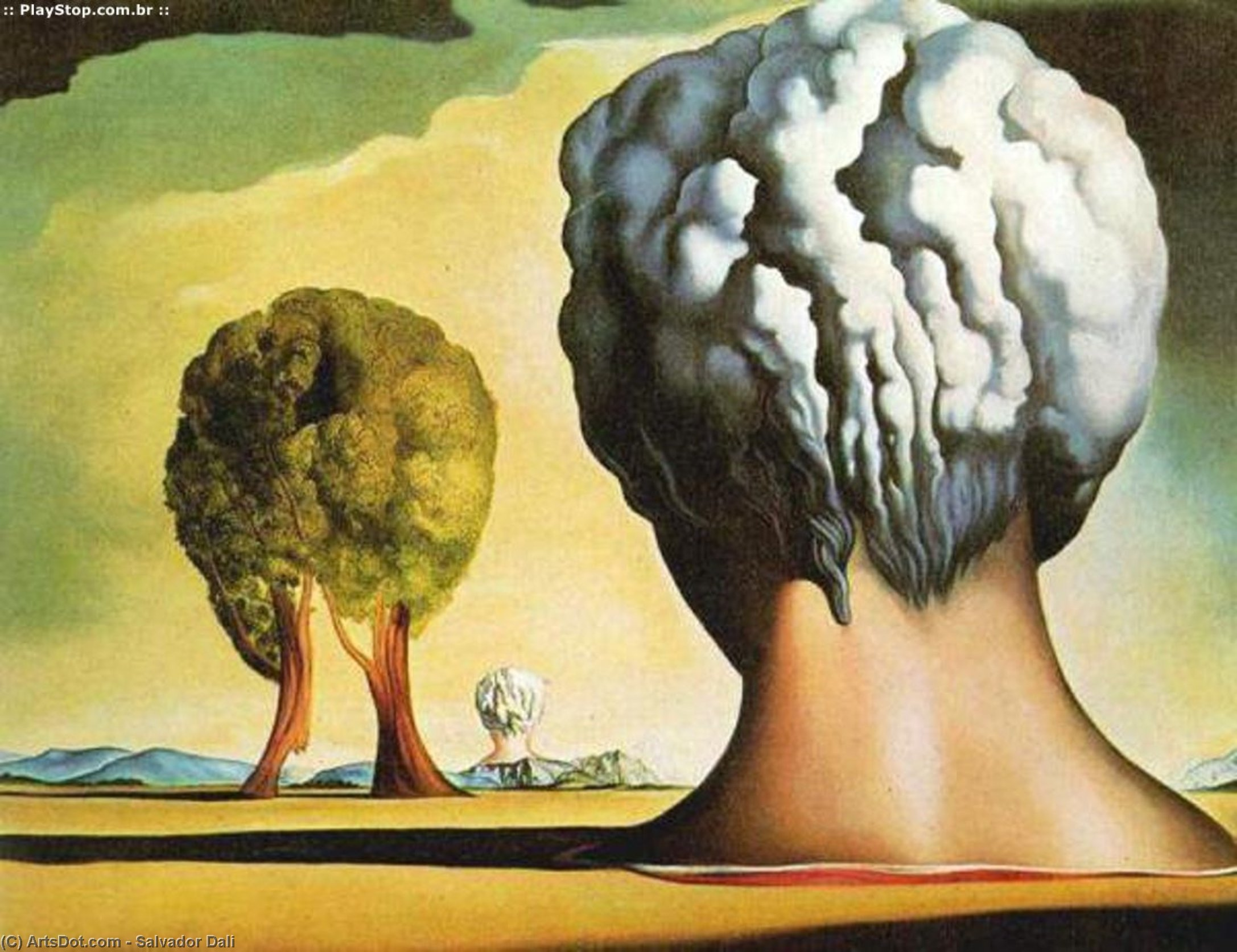 salvador dali life span development and The psychoanalysis of salvador dali  personality development  we create a style of life dali's style of life seems to be the dominant type.