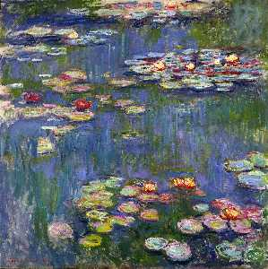 Water Lilies (or Nympheas)