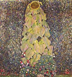 Sunflower, The