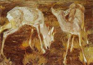 Deer at Dusk