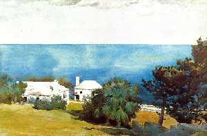 Shore at Bermuda