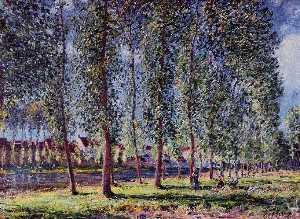 Lane of Poplars at Moret