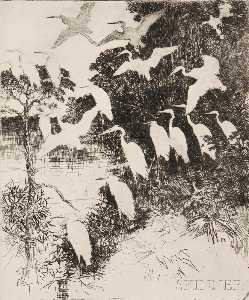 Heron Roost