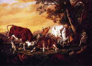 Волки Атакующие скота