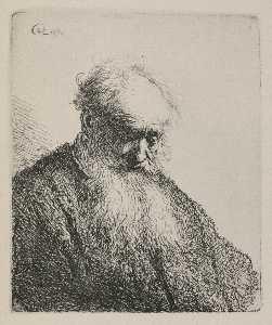 An Old Man with a Beard