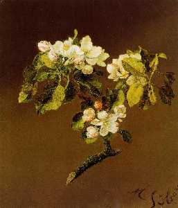 A Spray of Apple Blossoms