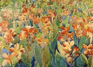 Bed of Flowers (aka Cannas or The Garden)