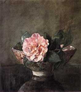 Camellia in Old Chinese Vase on Black Lacquer Table