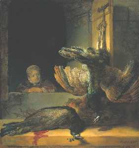 morto pavoni