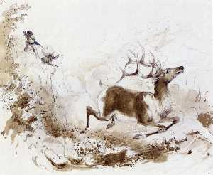 Death of the Elk