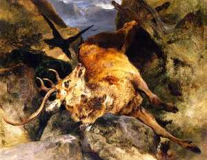 A Deer Fallen from a Precipice