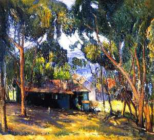 green house , Laguna Playa