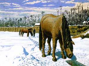 Horse Drinking at an Ice Hole