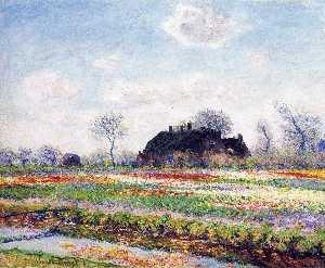 Tulip Fields at Sassenheim, near Leiden