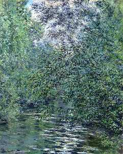The Willows on the River