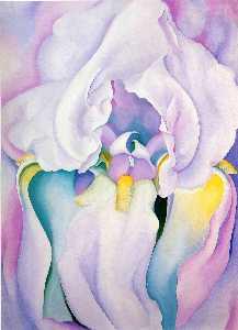 Light of Iris