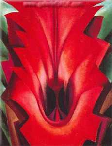 Inside Red Canna