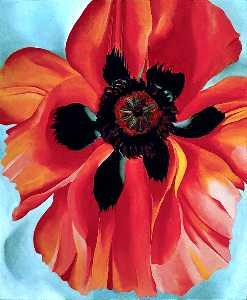 Red Poppy VI