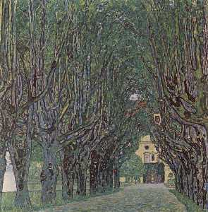Avenue of Schloss Kammer Park