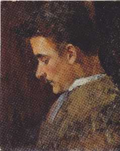 Rudolf Steindl, a brother of the artist