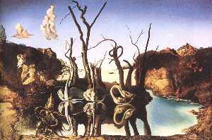 Cygnes Refletant Des Elephants