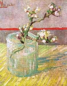Fioritura Almond Sede in un bicchiere