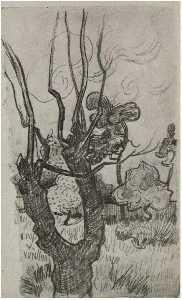 A Bare Treetop in the Garden of the Asylum
