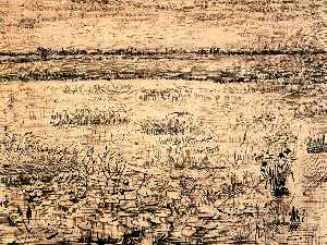 Marsh with Water Lillies