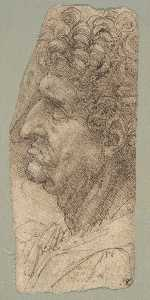 Head of a Man Facing to the Left