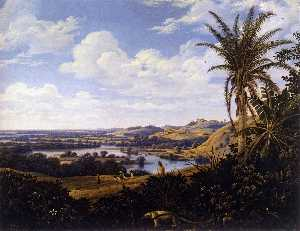 Brazilian Landscape with Anteater