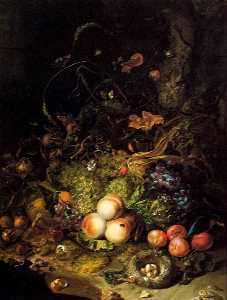 Flowers, Fruit, and Insects
