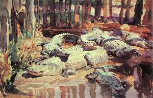 Muddy Alligators