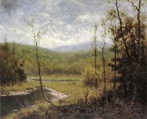 Quiet Stream, Adironcack Mountains