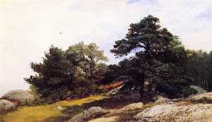 Study for Trees on the Beverly Coast