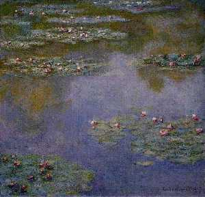 Water-Lilies (43)