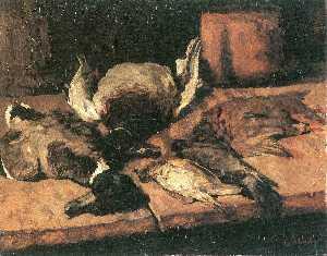 sauvage canards  et  petit  oiseaux