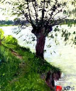 Willow on the Banks of the Seine
