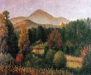 Wooded Mountain Scene in North Carolina