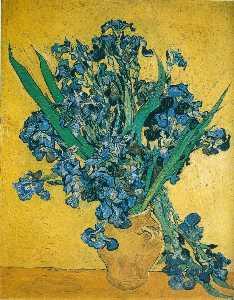 Irises, Rijksmuseum Vincent van G