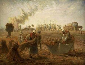 Buckwheat Harvest, Summer