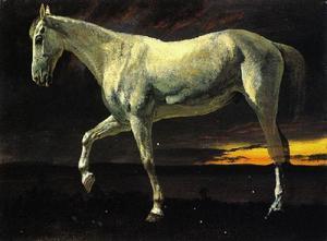 白 马 和 日落