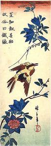 Un pájaro y de floración Ramas