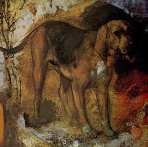 A Bloodhound