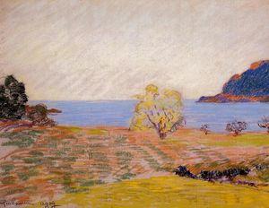 Agay Landscape
