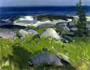 Vine Clad Shore - Monhegan Island