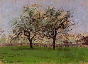 Apples Trees at Pontoise