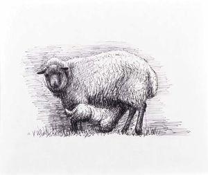 Sheep with Lamb III